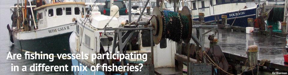 Fishery Diversification