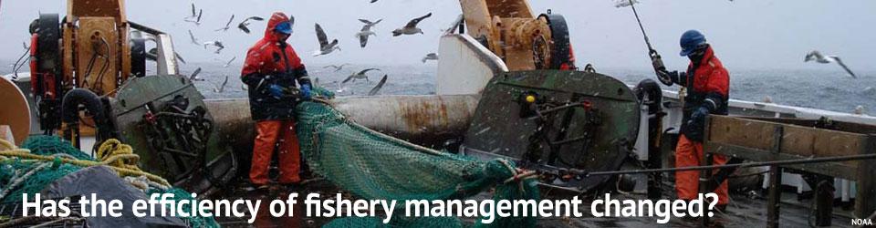 Management Efficiency